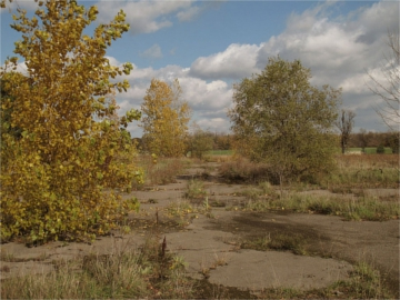 Photo: Blekky Schorr, 'Love Canal, NY Oct. 2012. Abandoned neighborhood of the City of Niagara Falls, NY.' used under Creative Commons Attribution license.