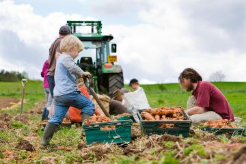 Photo: Community Supported Agriculture (CSA) Network UK and Canalside Community Food