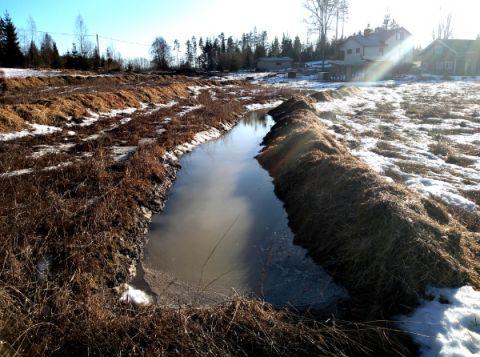 Newly dug swales filling with water Photo: DanMcTiernan