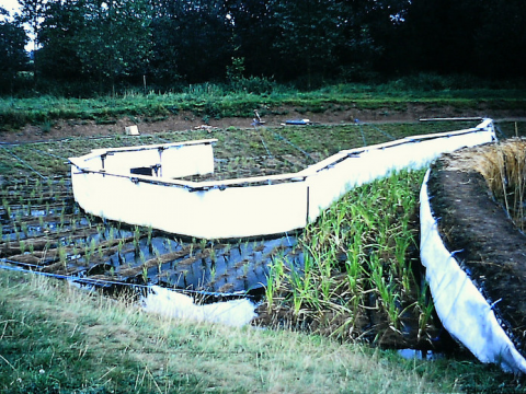 Water harvesting systems in operation